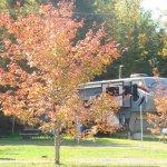 Timberland Acres RV Park  - Trenton, ME - RV Parks