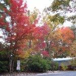 Horseshoe Trails Camping Resort - Cleveland, GA - RV Parks