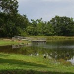 Fort Boggy State Park - Centerville, TX - Texas State Parks