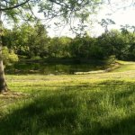 Foxwood Family Campground - East Stroudsburg, PA - RV Parks