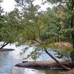 Mc Dowell Nature Preserve - Charlotte, NC - County / City Parks