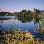 Sonoma County Fairgrounds RV Park - Santa Rosa, CA - RV Parks