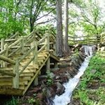 Crowleys Ridge State Park - Paragould, AR - Arkansas State Parks
