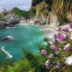 Pfeiffer Big Sur State Park - Big Sur, CA - California State Parks