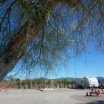 Shady Lane RV Park - Quartzsite, AZ - RV Parks