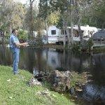Homosassa River RV Resort - Homosassa Springs, FL - Sun Resorts