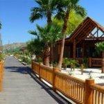 Moabi Regional Park - Needles, CA - County / City Parks