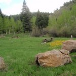 Ophir Creek Campground - San Isabel, CO - RV Parks
