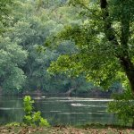 James River State Park - Gladstone, VA - Virginia State Parks