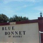 Blue Bonnet RV Park & Cottages - Mission, TX - RV Parks