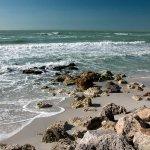 Gasparilla Island State Park - Boca Grande, FL - Florida State Parks