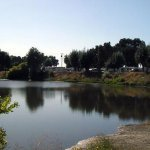 Turtle Beach RV Resort - Manteca, CA - Thousand Trails Resorts