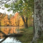 Red Hills Lake State Park - Sumner, IL - Illinois State Parks