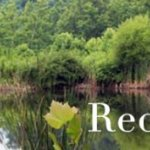 Red River Gorge Campground - Lexington, KY - RV Parks