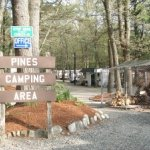 Pines Camping Area - Salisbury, MA - RV Parks