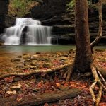 Clear Creek Recreation Area William B. Bankhead National Forest - JASPER  , AL - National Parks