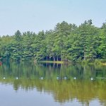 Sandy Beach RV & Camping Resort - Contoocook, NH - Encore Resorts