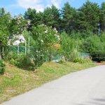 Natures Campsites - Voluntown , CT - RV Parks