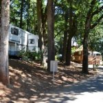 Hope Valley Resort - Turner, OR - RV Parks