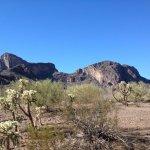 Picacho / Tucson NW KOA - Picacho, AZ - KOA