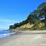 New Brighton State Beach - Capitola, CA - RV Parks