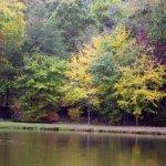 Leisure Acres Campground - Cleveland, GA - RV Parks