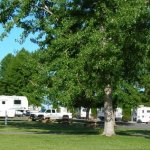 Candy Mountain RV Park - Coaling, AL - RV Parks