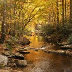 South Mountains State Park - Connelly Springs, NC - North Carolina State Parks