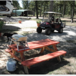 The Oaks at Alba RV Resort - Alba, TX - RV Parks