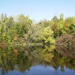 Red Rock Ponds RV Resort - Holley, NY - RV Parks