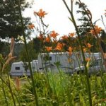 Countryside Campground - Harrison, MI - RV Parks