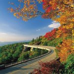 Tranters Creek Resort & Campground  - Washington, NC - RV Parks