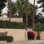 Bonita Mesa RV Resort - Yuma, AZ - RV Parks