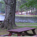 Shady Point Beach & Campgrounds - Lunenburg, MA - RV Parks