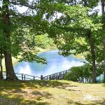 Cherokee Landing Campground - ELS  - Saulsbury, TN - Thousand Trails Resorts