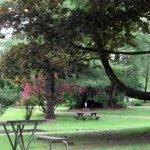 Friday Creek Campground - Burlington, WA - Encore Resorts