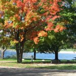 Metamora-Hadley Recreation Area - Metamora, MI - RV Parks