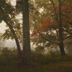 Burrell Park  - Carmi, IL - County / City Parks
