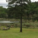 St. Stephens Historical Park - Saint Steohens, AL - County / City Parks