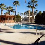 Indian Skies RV Resort - Coolidge, AZ - RV Parks