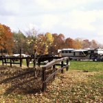 Blackwell Horsecamp - Heltonville, IN - Free Camping