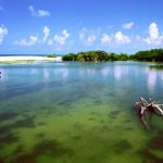 Lovers Key State Park - Fort Myers Beach, FL - RV Parks