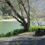 Duncans Mills Camping Club - Duncans Mills, CA - RV Parks