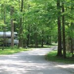 Meeman Shelby Forest State Pk - Millington, TN - RV Parks