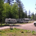 Apache Trout Campground Apache-Sitgreaves National Forest -  Springerville, AZ - National Parks