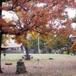 Greenleaf State Park - Braggs, OK - Oklahoma State Parks