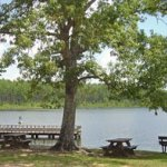 Blackwater River Primitive Recreation Site - Holt, FL - Free Camping