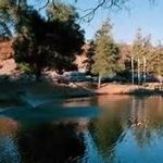 Ramona Canyon RV Resort - Ramona, CA - RV Parks