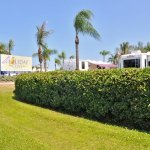 Holiday Cove RV Resort - Cortez, FL - RV Parks