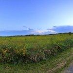 Myre Big Island State Park - Albert Lea, MN - Minnesota State Parks